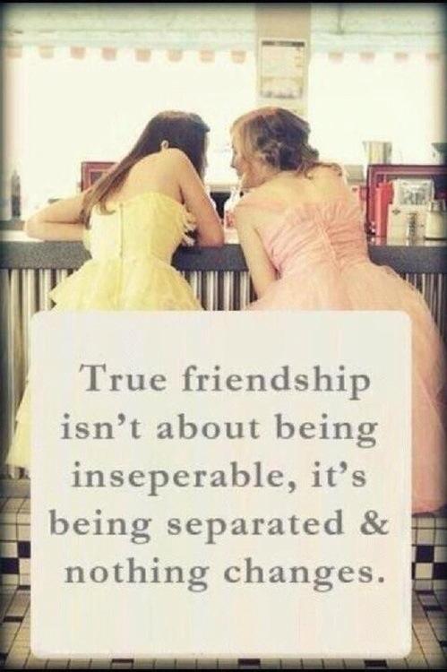 citazione amiciziaIMG_0459.JPG